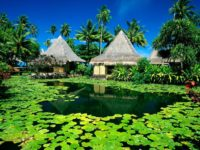 huts palm trees lake tropics water-lilies 1920x1080