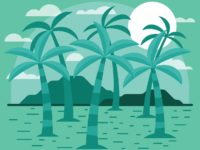 palm trees art sith sun set green color amazing view