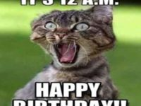 funny cat birthday meme
