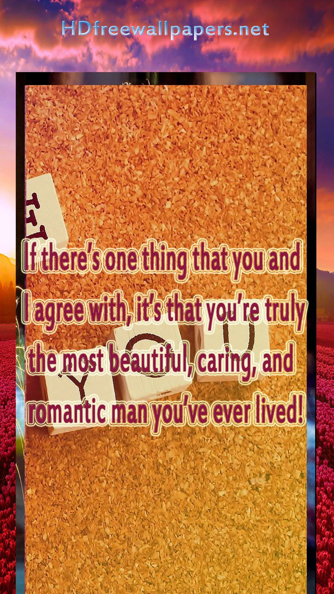 love you valentines day sayings and quotes images